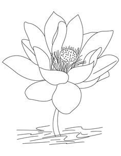 Free Printable Lotus Coloring Pages For Kids | Lotus