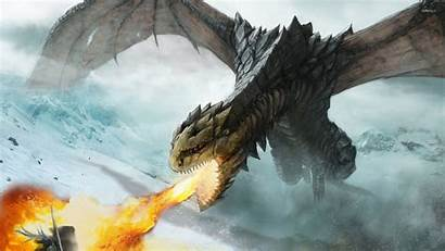 Dragon Fire Breathing Wallpapers Fantasy Dragons Ice