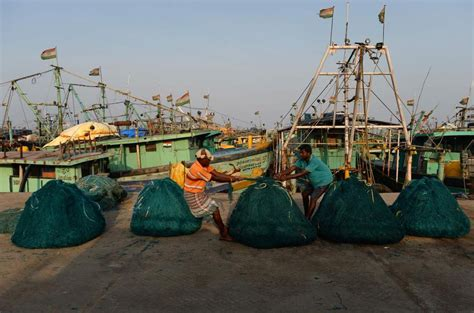 Cost Of Fishing Boat In Chennai by Billions In Revenue Lost Globally For Bottom Trawling