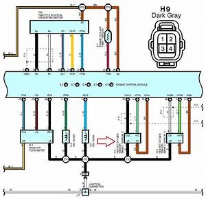 Multiplex Wiring Diagram Lexus B