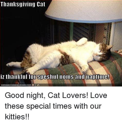 Thanksgiving Cat Meme - thanksgiving cat iz thankful for sdeshull noms and maltime icefinhascheezeurgercom good night