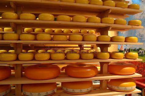 cheese factory  holland editorial stock photo image  edible