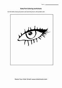 Free Printable Eye Worksheet Worksheets for all Download