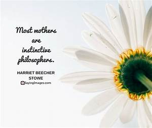 Mothers Day Quotes About Flowers | Euffslemani.com