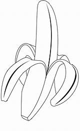 Banana Coloring Pages Fruits Colouring Drawing Leaf Vegetable Printable Fruit Tropical Sheets Getdrawings Wreck Delicious Peeled Popular Kidsplaycolor sketch template