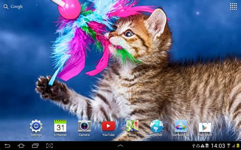 Cat Live Wallpaper  Androidapps Auf Google Play