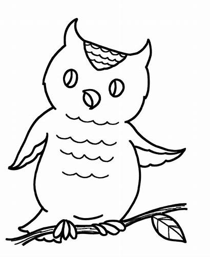 Coloring Easy Pages Owl