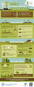 108 Best Infographics Images