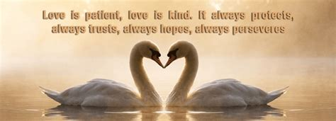 love  patient love  kind quote  beautiful images
