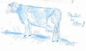 Blaue Kuh Magdeburg : s ren 39 s mathelabor wo ist die milka kuh geschlachtet ~ Watch28wear.com Haus und Dekorationen