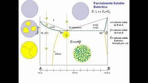 Diagrama De Equilibrio De Las Fases