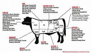 Understanding Beef  U2013 The Loin