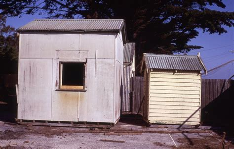 trumbology asbestos removal