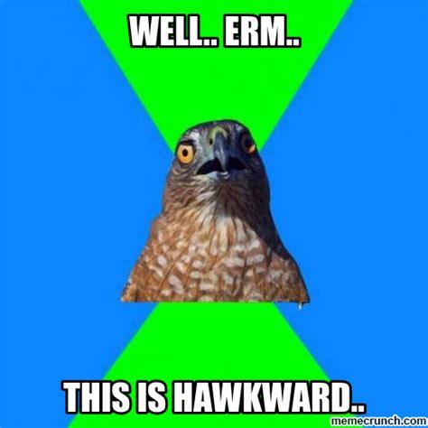 Awkward Meme - awkward hawk