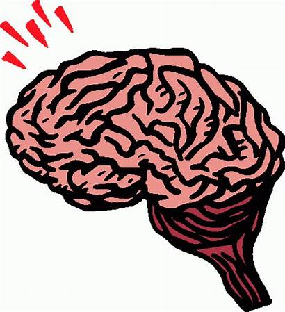 Brain Clipart Animated Clip Recovery Intelligence Learning