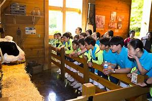 Korean Children's Choir Visits Library - The Billy Graham ...