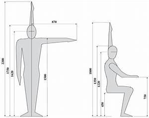 Dimension Chaise Standard : dimension normales des meubles ~ Melissatoandfro.com Idées de Décoration