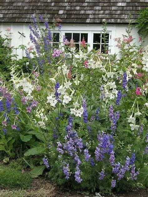 949 best images about cottage garden fancies on