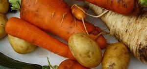 Gemüse Richtig Lagern : tipps zum konservieren und richtigem lagern von gem se ~ Whattoseeinmadrid.com Haus und Dekorationen