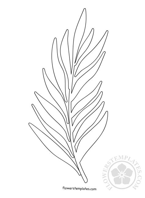 palm branch template palm sunday flowers templates