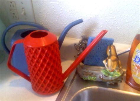 discovering cleaning vintage plastic watering cans