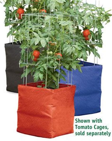 best tomato grow bags 17 best images about garden air pruning on pinterest sacks enabling and container gardening