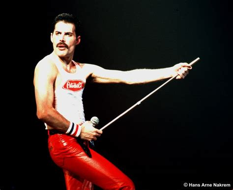 Queen Freddie Mercury Quotes. Quotesgram