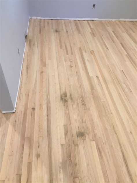 cleaning pet stains from wood floors what if my hardwood floor has pet stains