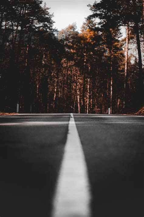 Straight Line Pictures   Download Free Images on Unsplash