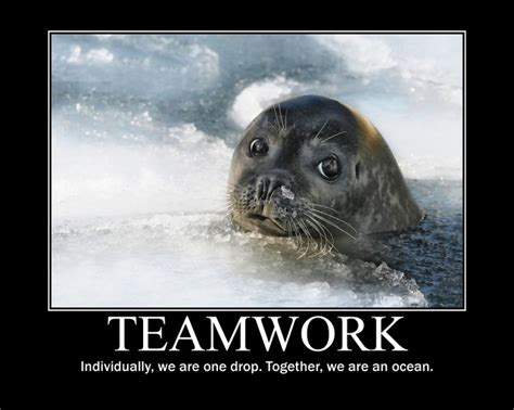 Teamwork Meme - 90 best images about team on pinterest sports theme classroom babe ruth and motivation success