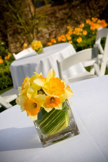 46 Best Daffodil Images On Pinterest  Daffodils, Flower Arrangements And Wedding Bouquets