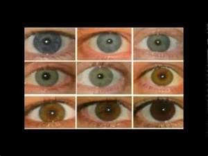 Eye color and blood types Tesla. Mythological Zeus and ...