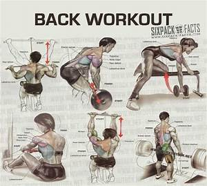 The Best Back Workout Plan