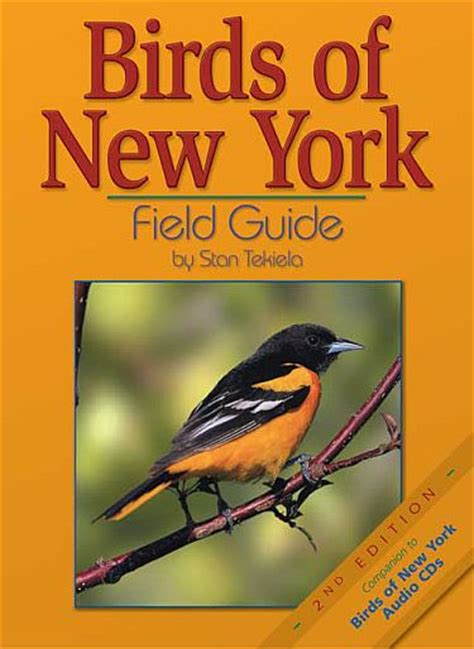 birds of new york field guide new york bird