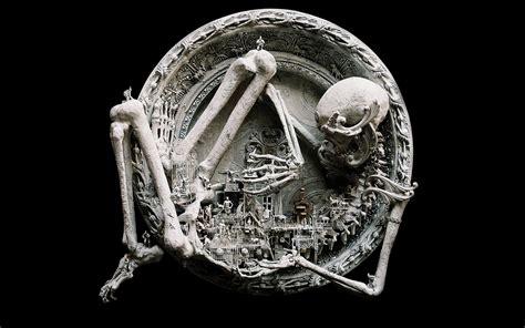 Animal Skeleton Wallpaper - animal skeleton wallpaper gallery