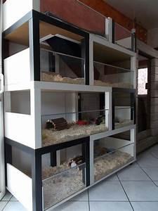 Meerschweinchen Gehege Ikea : un meuble cochon d inde fabriquer petit prix petit prix cochons et ikea ~ Orissabook.com Haus und Dekorationen