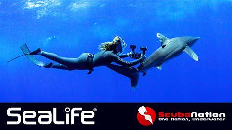 sealife cameras sponsors shark week  scubanation