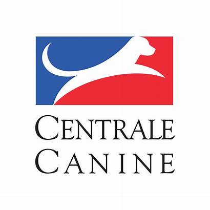 Club Kennel Canine French Scc Centrale Pedigree