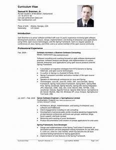 Top 10 cv resume example resume example pinterest for Cv resume sample