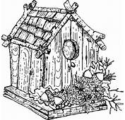 Traditional Bird House Coloring Pages  Best Place To Color