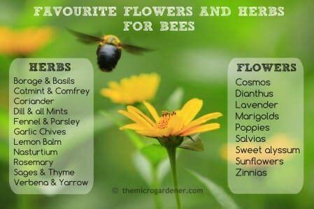 steps  improve pollination   harvests part