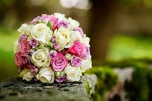Blumen Bewässern Mit Wollfaden : blumen aumayr blumen aumayrs webseite ~ Lizthompson.info Haus und Dekorationen