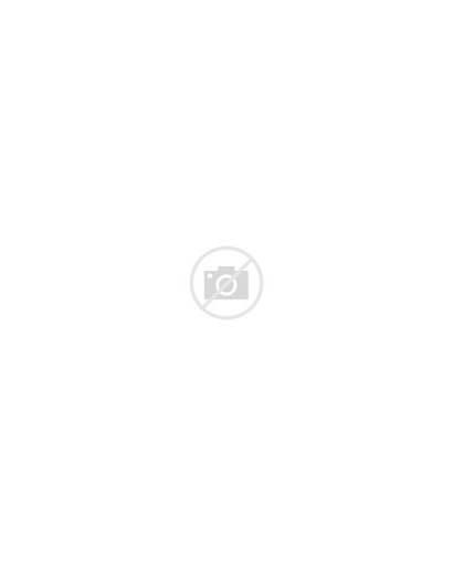 Foster Cody Mouse Retro Ornament Mushroom Orn