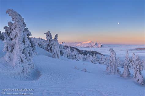 fotos aus den kantonen obwalden nidwalden naturbildch