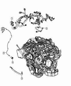 2015 Jeep Grand Cherokee Wiring  Injector   50 State