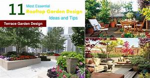 11 Most Essential Rooftop Garden Design Ideas and Tips