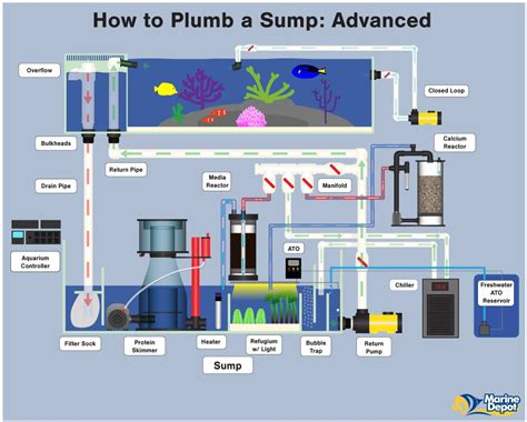 How to Plumb a Sump - Basic, Intermediate and Advanced