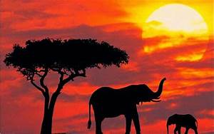 Kenya — 12 Incredible Tourist Attractions | Amazing Places