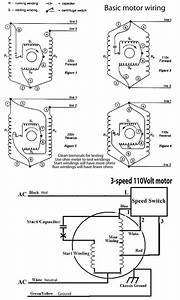 Minn Kota 5 Speed Switch Wiring Diagram from tse3.mm.bing.net