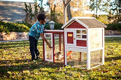 advantek the stilt house rabbit hutch advantek the stilt house rabbit hutch import it all